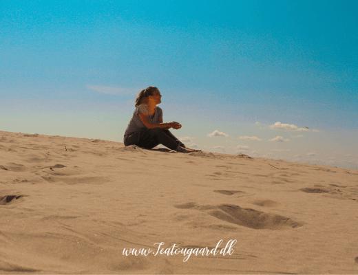 Råbjerg mile, ørken i Danmark, Sandbunke Råbjerg mile, gratis seværdighed i Nordjylland, Gratis oplever i Skagen, Gratis seværdigheder i Skagen,