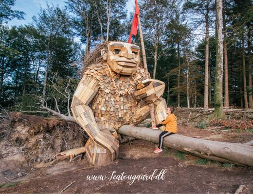 Thomas Dambo, Thomas Danmbo trold Silkeborg, Silkeborg trold, trold i Silkeborg, Silkeborg bad, Silkeborg bad trold, træ trold i Silkeborg, Stærke storm, Trolden Stærke Storm,
