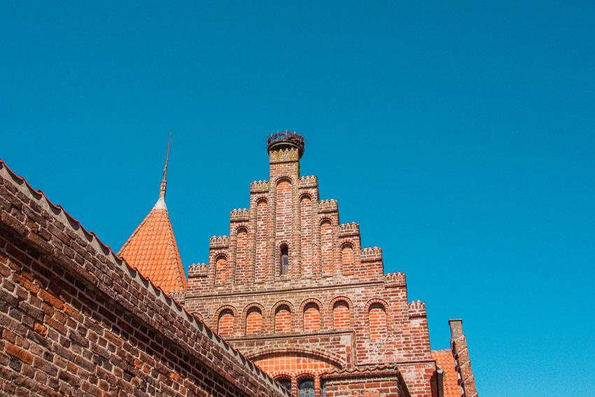 Ribe rådhus, Det gamle Rådhus, Storke i Danmark, Storkereder, Storke i Ribe,