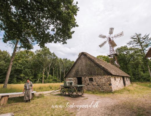 Hjerl Hede, Hjerl hede friluftmuseum, seværdigheder på vestkysten, seværdigheder i vestjylland, vestjylland oplevelser, oplevelser i vestjylland, oplevelser på vestkysten, open air museer, landbrugsmuseum, museer med huse,