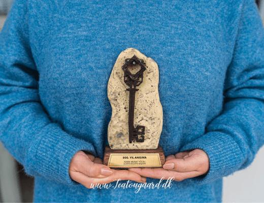 Nøglen til Alanya, Alanya nøgle, Alanya 800 år, Alanya ceremoni, Alanya´s fødselsdag, Alanya blogger