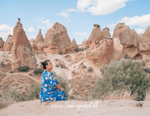 Fantasi dalen i Kappadokia, pasabag valley, cappadokia, monks valley cappadocia, dalene i Kappadokia, steder man skal se i Kappdokia, unikke steder i Tyrkiet,