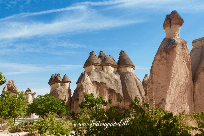 pasabag dalen i Kappadokia, pasabag valley, cappadokia, monks valley cappadocia, dalene i Kappadokia, steder man skal se i Kappdokia, unikke steder i Tyrkiet,
