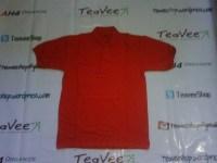 TeaVee Pict (28)
