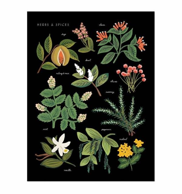 rifle paper herbs print charcoal
