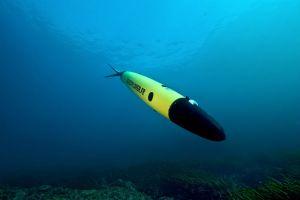 Under Water Gliders