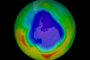 Here's how Environment Ministry celebrated International Ozone Day