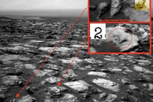 Do aliens exist? Greek God Pan and Number found on Mars in NASA Curiosity image: UFO Sightings Daily
