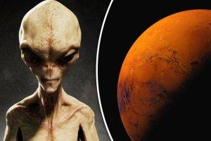 Alien-life-601800