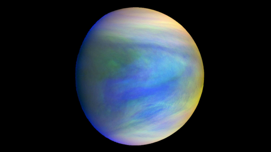 planet venus could host life forms study