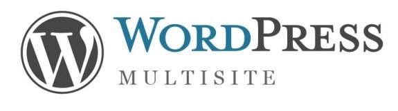 WordPress-Multisite-Installation-tutorial-guide-techprofis