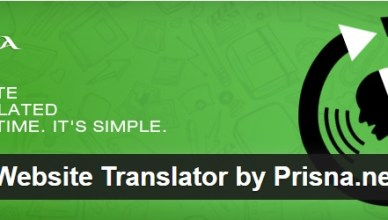 Wordpress Multilanguage Site Widget Google language translator