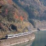 鉄道写真 紅葉が真っ赤 秋の高山本線