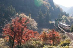 高山本線キハ40系普通列車