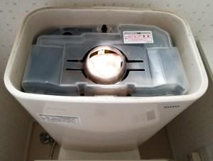 トイレのカビ駆除