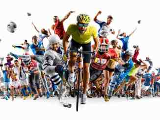 Completely different Kinds of Sports activities