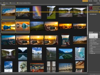Adobe Bridge- ը