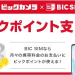 BIC SIMの料金にビックカメラのビックポイントを充当する「ビックポイント支払い」の使い方
