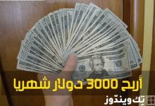 Photo of كيفية ربح 3000 دولار شهرياً من الإستثمار