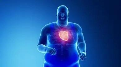 Fat around the heart
