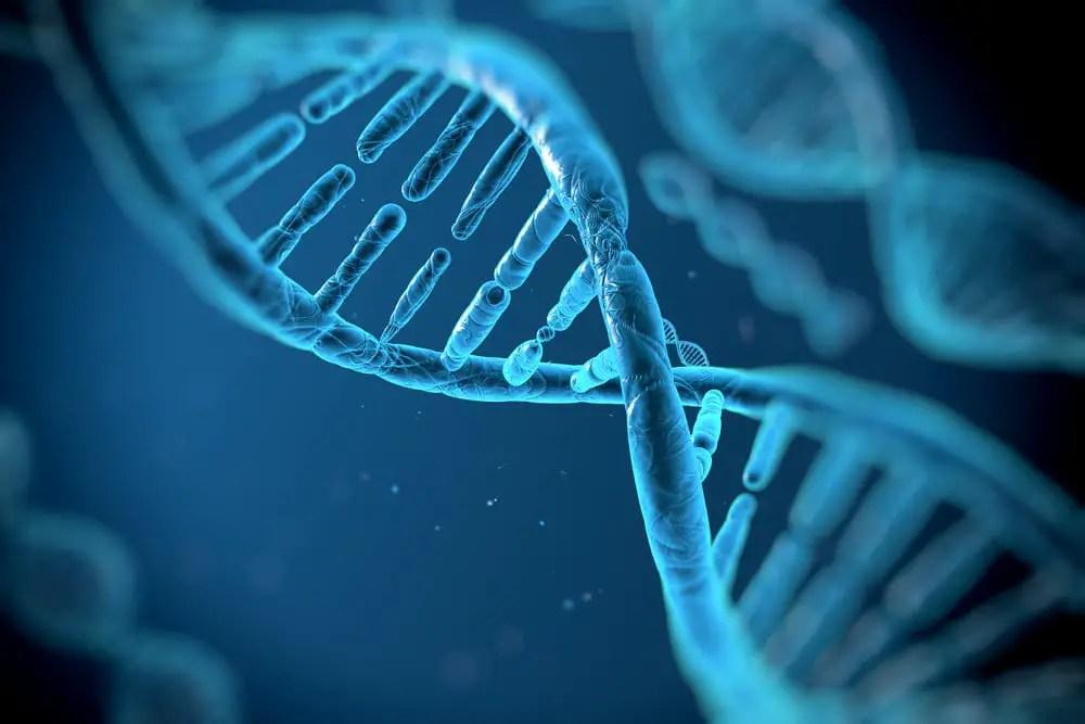 Ultra rare hereditary variants