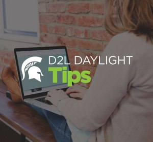 D2L Daylight Tips