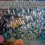 DEC 2: HOLE IN THE WALL TEC CHARTER
