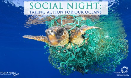 APRIL SOCIAL NIGHT: TAKING ACTION FOR OUR OCEANS