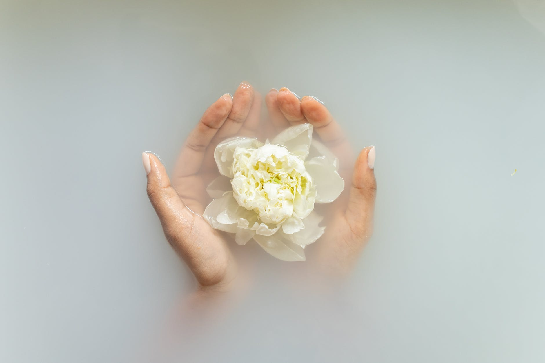 woman holding gentle ivory flower in hands