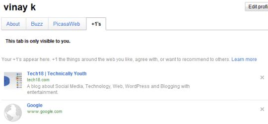 google profile with google +1 tab