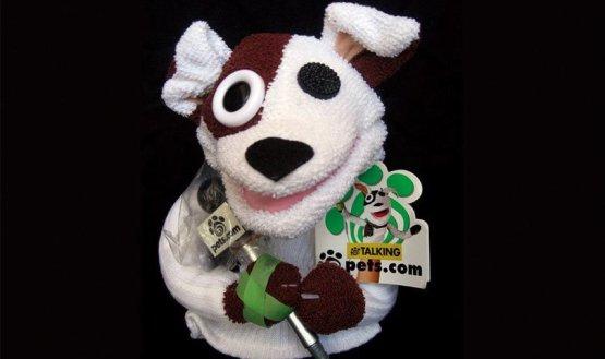 نتيجة بحث الصور عن Pets.com شركة & أمازون