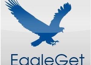 EagleGet 2.1.6.80 Crack With Serial Key Latest Version 2021
