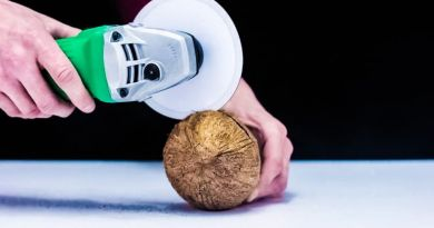 Mr Hacker Paper Saw Cutting Coconut Video Demo Hands Working Tools Hitachi Blade