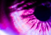 Retina Eye Macro Closeup Close Up Google AI Heart Risk Article PDF Science Medical Health Tech