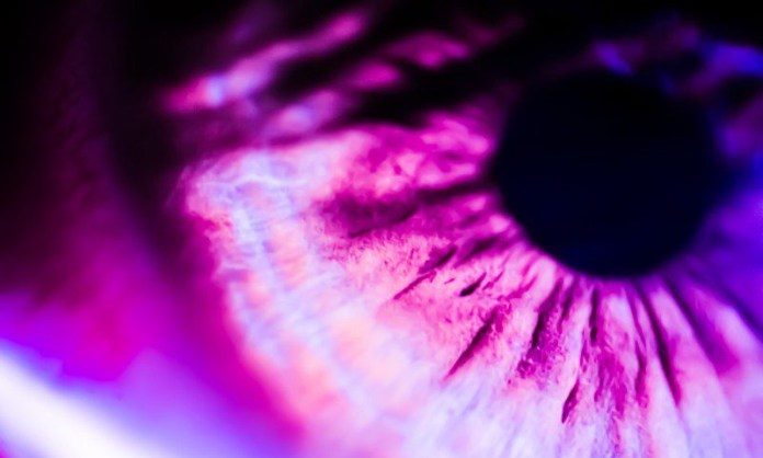 Retina Eye Macro Closeup Close Up Google AI Heart Risk Article PDF Science Medical Health Tech