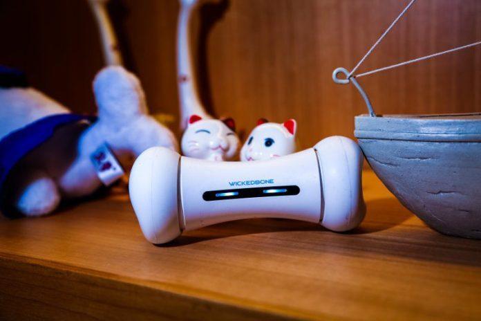 Wickedbone Dog IoT Gadget Toy Modern Tech Playing Learning