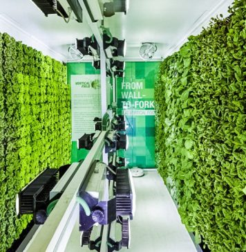 Geoponic Technology Evergreen Kosher Market Wall To Fork Vertical Farming in Super Market Robotics Automated Produce Growing