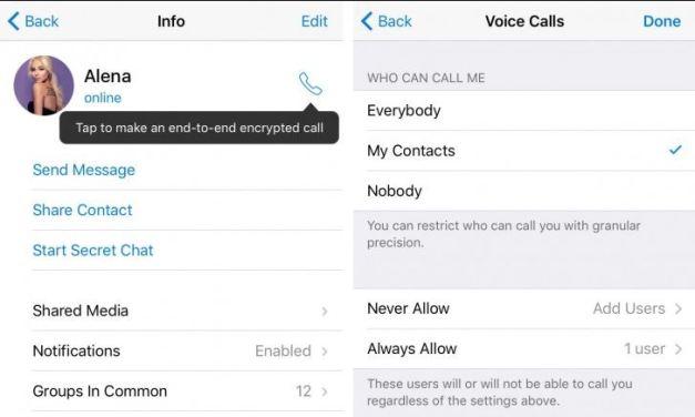 Telegram ya permite hacer llamadas de voz
