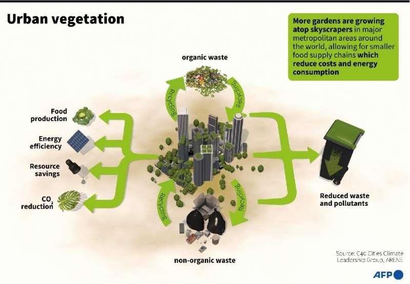 Cities growing green