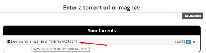 Top 15 Free Torrent leech sites to download torrents on IDM