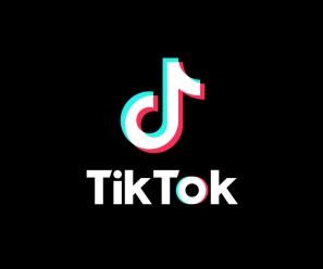 TikTok Logo is shown