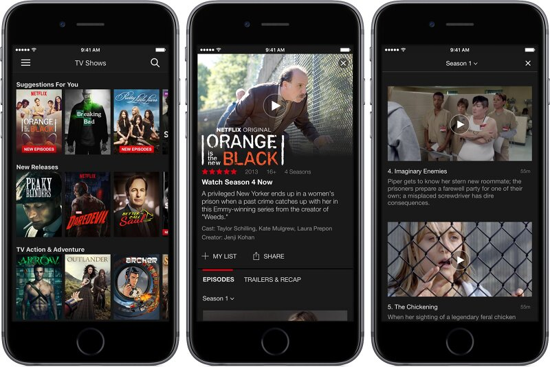 Download Netflix MOD APK Interface