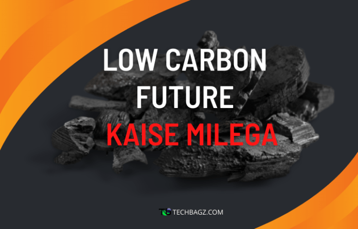 Importance Of Low Carbon Future