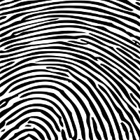 Fingerprint-scanner-could-show-up-on-Android-phones-within-6-months-says-alliance
