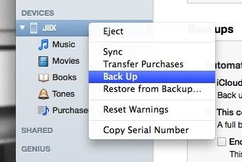 extract-backup-all-your-text-messages-picture-messages-from-your-iphone-your-mac.w654