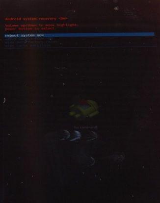 DSCN0444-473x600