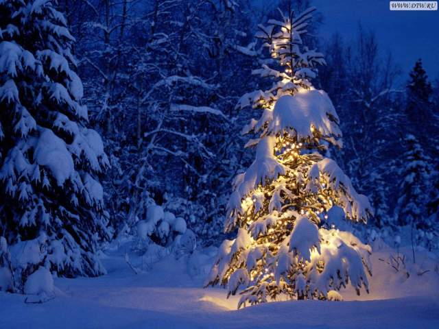 Best HD Christmas Wallpapers