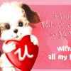 Valentines-day-2015-cute-teddy-pic