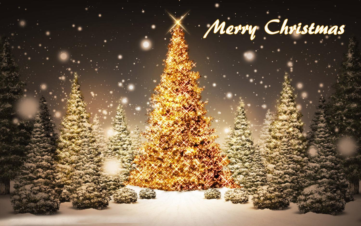 Merry Christmas Images Free Download.Merry Christmas Tree Free Download Wallpaper 2018