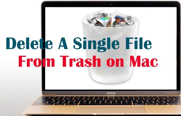 How to Delete A Single File from Trash on Mac